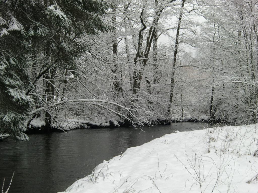 Forges 55 - Lienne in de winter